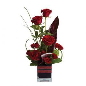 Rose Romance